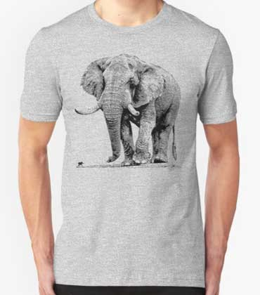 mens-t-shirts